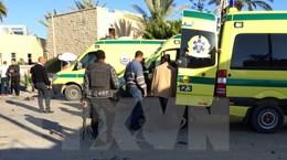 Ai Cập: Phiến quân Hồi giáo phục kích tại Sinai sát hại 3 sỹ quan