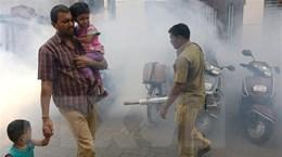 Ấn Độ lo ngại tình trạng các ca nhiễm virus Zika không ngừng tăng