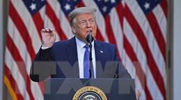 Nhiều thành viên cấp cao đảng Cộng hòa không ủng hộ ông Trump
