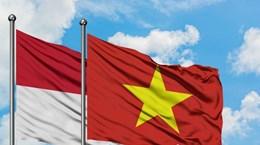 Cuộc thi thiết kế logo 65 năm quan hệ ngoại giao Việt Nam-Indonesia