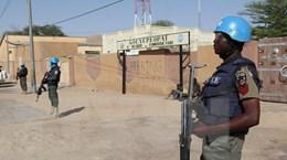 Việt Nam kêu gọi tăng nỗ lực thực hiện hiệp định hòa bình tại Mali