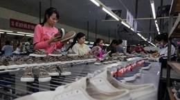 Bỉ xem EVFTA là cơ hội để tăng cường hợp tác nhiều mặt với Việt Nam