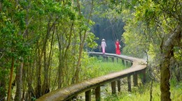 Bảo tồn và phát triển các hệ sinh thái ở Đồng bằng sông Cửu Long