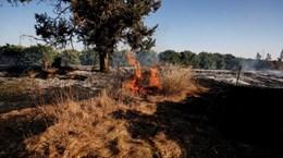 Bóng bay gây cháy từ Dải Gaza gây nhiều vụ hỏa hoạn tại Israel