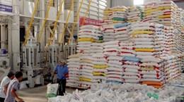 Tìm hướng đi cho xuất khẩu gạo 2014