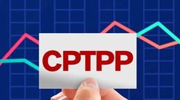 Hiệu ứng địa chính trị của việc Trung Quốc gia nhập CPTPP