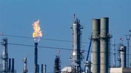 Phản ứng của các nước với cuộc khủng hoảng năng lượng toàn cầu