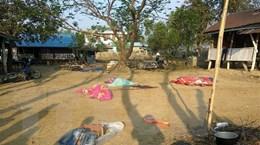 Myanmar: Tấn công nhằm vào cảnh sát bang Rakhine, 9 người thiệt mạng