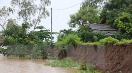 Bạc Liêu: Sạt lở nghiêm trọng tuyến kênh vào chùa Hưng Thiện