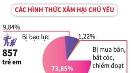 [Infographics] Đã phát hiện, xử lý 8.442 vụ xâm hại trẻ em