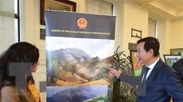 Tăng cường quảng bá văn hóa Việt Nam với bạn bè Ai Cập