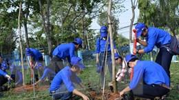 Đồng Tháp, Thái Nguyên, Lào Cai hưởng ứng Chiến dịch Giờ Trái Đất 2019