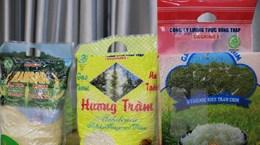 Công bố kết quả liên kết chuỗi giá trị lúa gạo dự án VnSAT