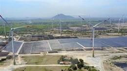 Chưa đủ điều kiện xét chuyển mục đích sử dụng rừng thành nhà máy điện