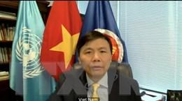 Việt Nam với HĐBA: Nâng cao vị thế, tạo môi trường cho hội nhập