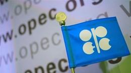 Giá dầu tăng sau khi OPEC và các đối tác nhất trí cắt giảm sản lượng