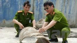 Tháo dỡ toàn bộ hệ thống xả thải của Tung Kuang