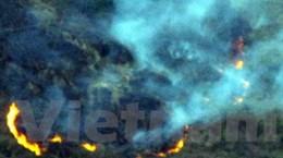 Cháy rừng đe dọa thiêu rụi dãy Hoàng Liên Sơn