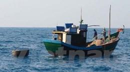 Đã liên lạc được với tàu cá và 10 ngư dân mất tích