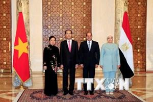 Chủ tịch nước Trần Đại Quang hội đàm với Tổng thống Ai Cập Al Sisi