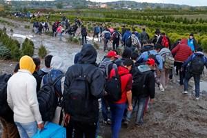 Hungary triệu Đại sứ Thụy Điển do những chỉ trích về chính sách di cư