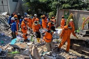 Động đất, sóng thần ở Indonesia: Trung Sulawesi bước vào tái thiết
