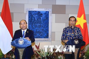 Thủ tướng Nguyễn Xuân Phúc và Tổng thống Indonesia chủ trì họp báo