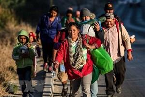 Tổng thống Mỹ dọa đóng cửa biên giới 'vĩnh viễn' với Mexico