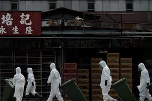 Trung Quốc xác nhận thêm hai ca nhiễm cúm H7N9