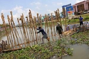 EU viện trợ 2 triệu euro cho người dân vùng hạn mặn ở Việt Nam