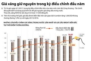 [Infographics] Giá xăng giữ nguyên trong kỳ điều chỉnh đầu năm