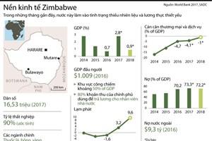 [Infographics] Những thông tin cơ bản về kinh tế Zimbabwe