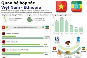 [Infographics] Quan hệ hợp tác giữa Việt Nam và Ethiopia