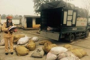 Thanh Hóa: Chặn đứng vụ vận chuyển 900kg bì lợn bốc mùi hôi thối
