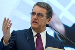 WTO gợi ý cơ chế giải quyết tranh chấp thương mại Mỹ-Trung