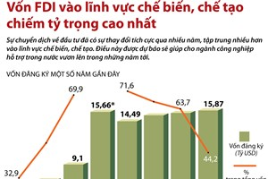 [Infographics] FDI vào lĩnh vực chế biến, chế tạo chiếm tỷ trọng cao