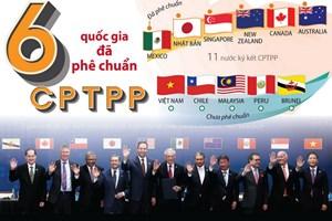 [Infographics] Sáu quốc gia đã phê chuẩn Hiệp định CPTPP