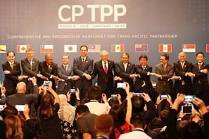 """Canada West Foundation: Hiệp định CPTPP đã đến """"đúng thời điểm"""""""