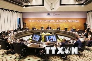 APEC 2017: Báo chí Arab đánh giá tích cực vai trò chủ nhà của Việt Nam