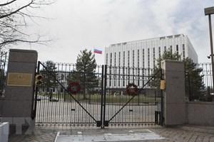 Người Nga ở Mỹ kết thúc bỏ phiếu sớm bầu cử Tổng thống năm 2018