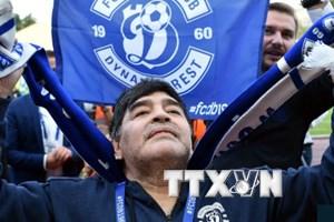 Bê bối với vai trò đại sứ FIFA, Maradona vẫn kiếm được công việc mới