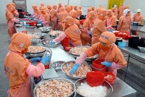 Canada và Việt Nam sẽ trở thành những thị trường quan trọng của nhau