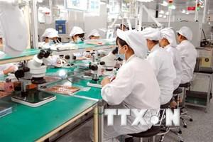 [Video] Đồng Nai thu hồi hơn 170 dự án FDI chậm triển khai