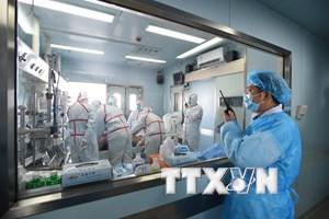 Trung Quốc phát hiện một trường hợp tử vong vì cúm gia cầm H7N9