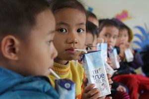 """Đi tìm """"nguồn sữa"""" chất lượng cao cho chương trình sữa học đường"""