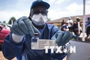 Phát hiện ra một chủng virus Ebola mới tại Sierra Leone