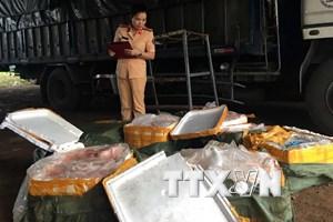 Thanh Hóa phát hiện xe tải vận chuyển 2,5 tấn thịt lợn bẩn
