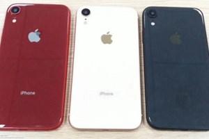 Rò rỉ iPhone 6,1inch sắp tới của Apple với màu sắc lạ mắt