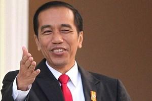 Tổng thống Indonesia và Phu nhân bắt đầu thăm cấp Nhà nước Việt Nam