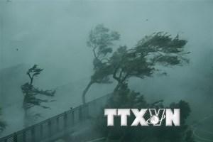 Bão Mangkhut đổ bộ vào Quảng Đông, sóng biển cao 4m ở Vịnh Bắc Bộ